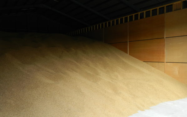 Crop Drying & Storage Solutions | Timmins Engineering